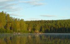 Holtsjøen