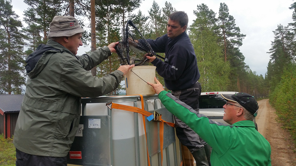 (bilde: Sigurd Lie, Finn Ole Oksvold og Ottar Haugen)
