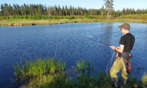 Kynndalsmotjern på Våler Finnskog